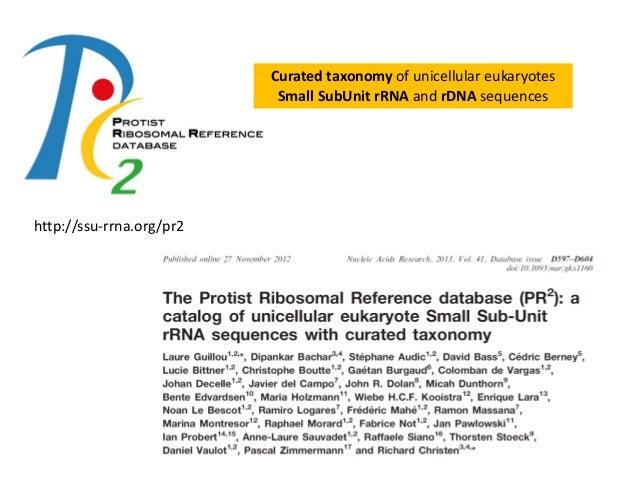 ribosomal database project