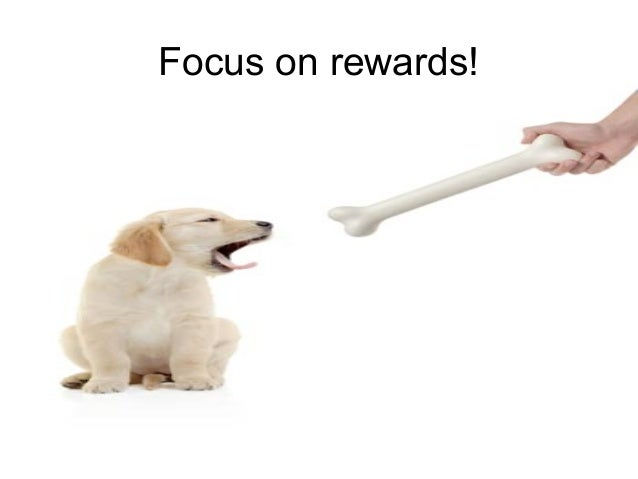 Leadership and Motvaton Skills Mohammad Tawfk #WikiCourses http:////WikiCoursesWWikiSpacesWcom Focus on rewards!