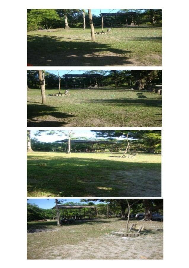 Essa foto e as de cima são as fotos onde funcionava a praça e os eventosfestival do guaiamum,festa das crianças e festa de...