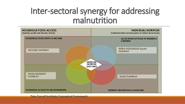 Inter-sectoral synergy for addressing malnutrition Tata-Cornell Institute Conceptual Framework HOUSEHOLD FOOD SUPPLY & INC...
