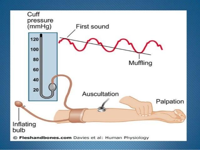 Blood Pressure Measurement 2011