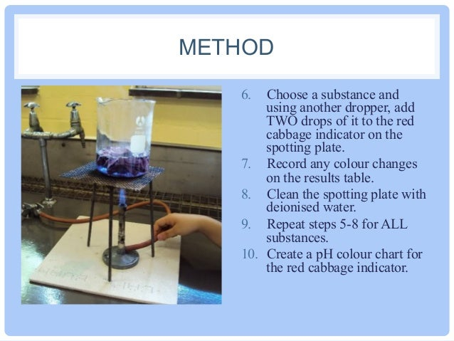 cabbage juice lab report ~ experiment 1: acid base experiment ~  that normally use in the lab have a ph around 0 to 1  color it turns the anthocyanin pigments in red cabbage juice the.