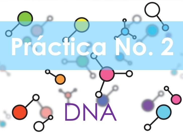 Práctica No. 2 DNA