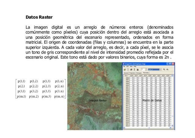 Datos Raster La imagen digital es un arreglo de números enteros (denominados comúnmente como píxeles) cuya posición dentro...