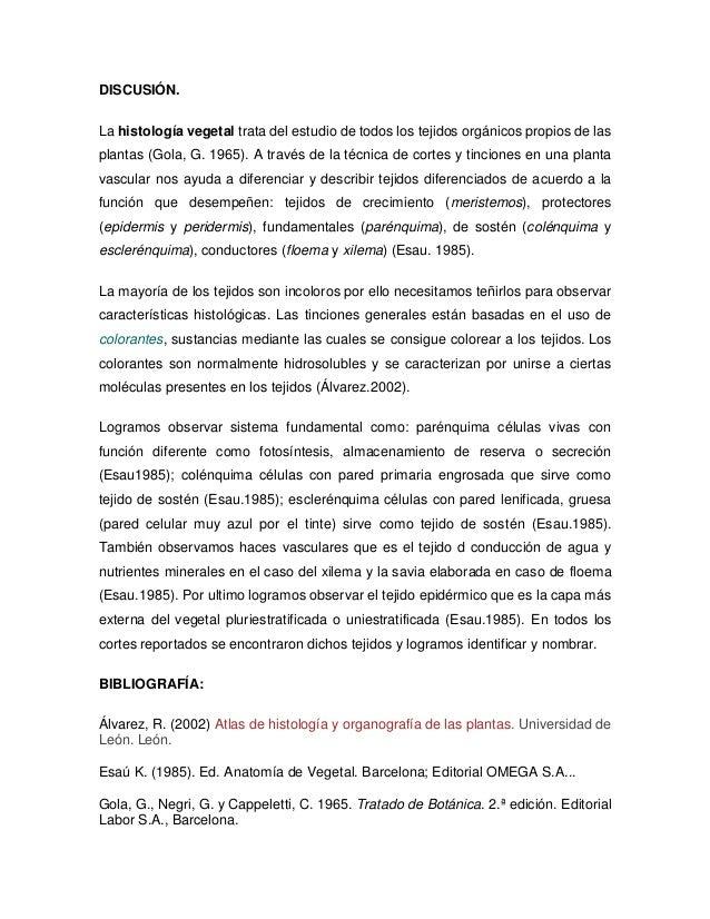 reporte practica morfologia y estructura de angiospermas