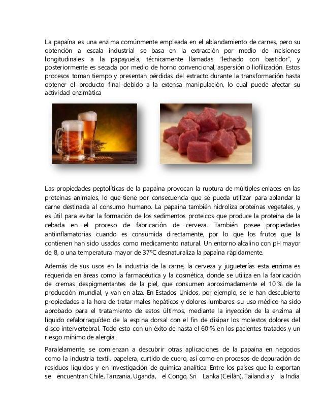 La papaína es una enzima comúnmente empleada en el ablandamiento de carnes, pero su obtención a escala industrial se basa ...