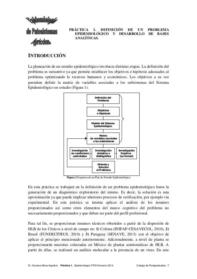 Practica 1 definicion de un problema epidemiol gico for Practica de oficina definicion