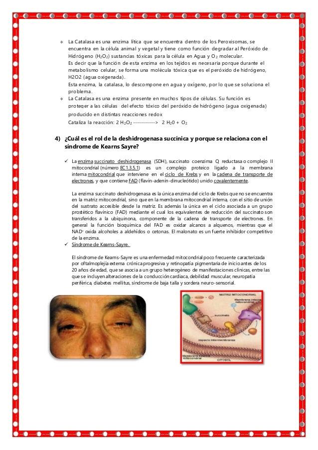Practica 10,acción enzimática