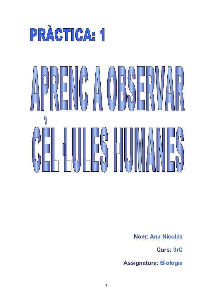 Nom: Ana Nicolás               Curs: 3rC    Assignatura: Biología1