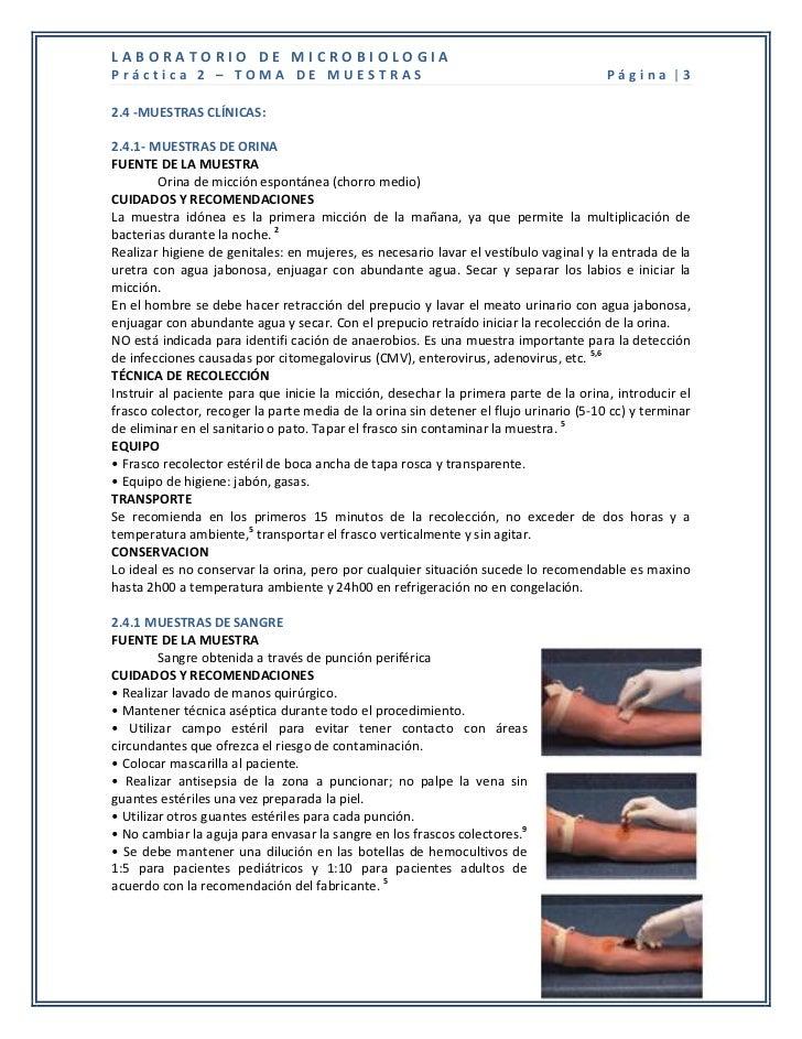 LABORATORIO DE MICROBIOLOGIAPráctica 2 – TOMA DE MUESTRAS                                                          Página ...