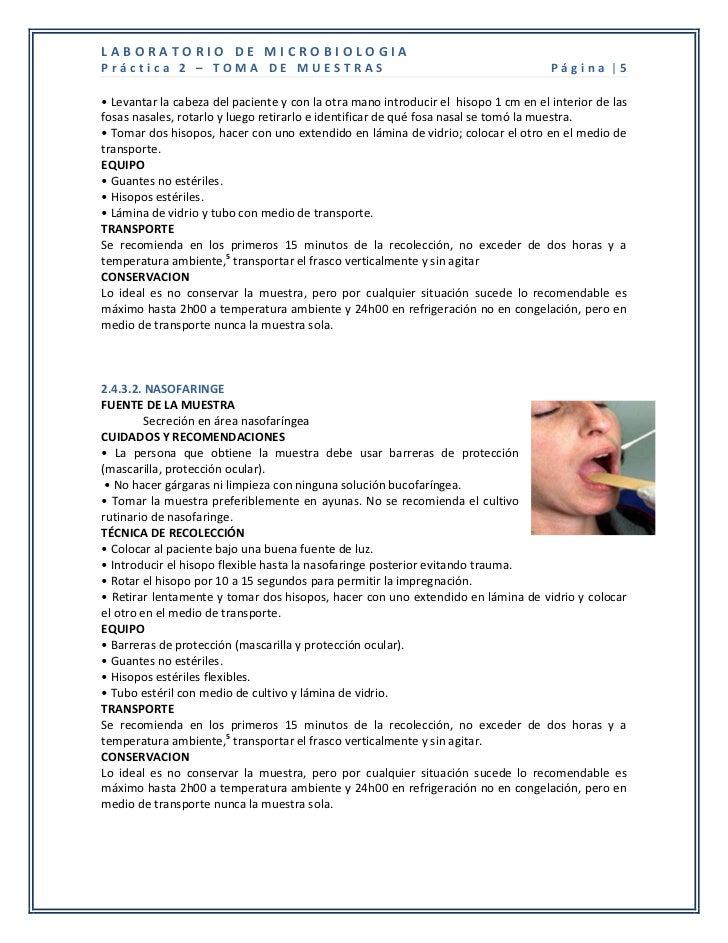 LABORATORIO DE MICROBIOLOGIAPráctica 2 – TOMA DE MUESTRAS                                                        Página |5...