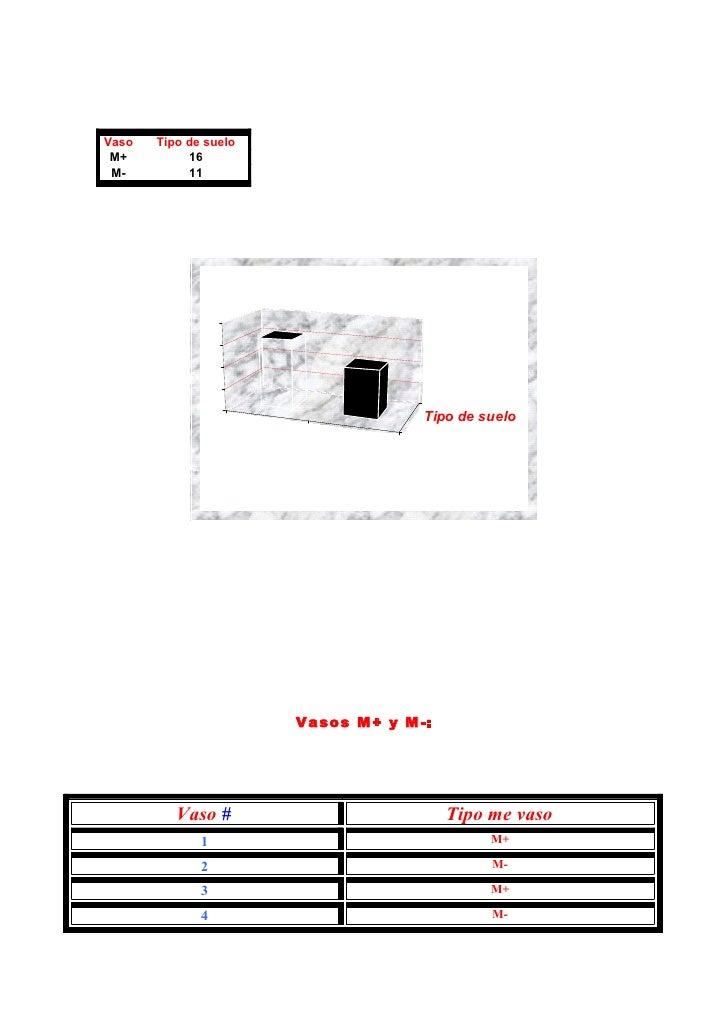 Vaso   Tipo de suelo  M+         16  M-         11                   20               15               10                 ...