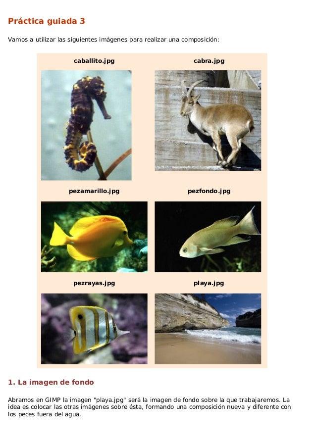 Práctica guiada 3 Vamos a utilizar las siguientes imágenes para realizar una composición:  caballito.jpg  cabra.jpg  pezam...