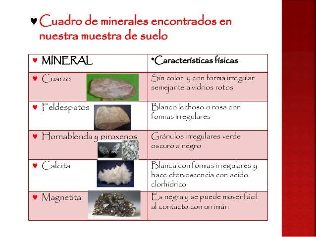 Practica 3 componentes solidos del suelo for Componentes quimicos del suelo