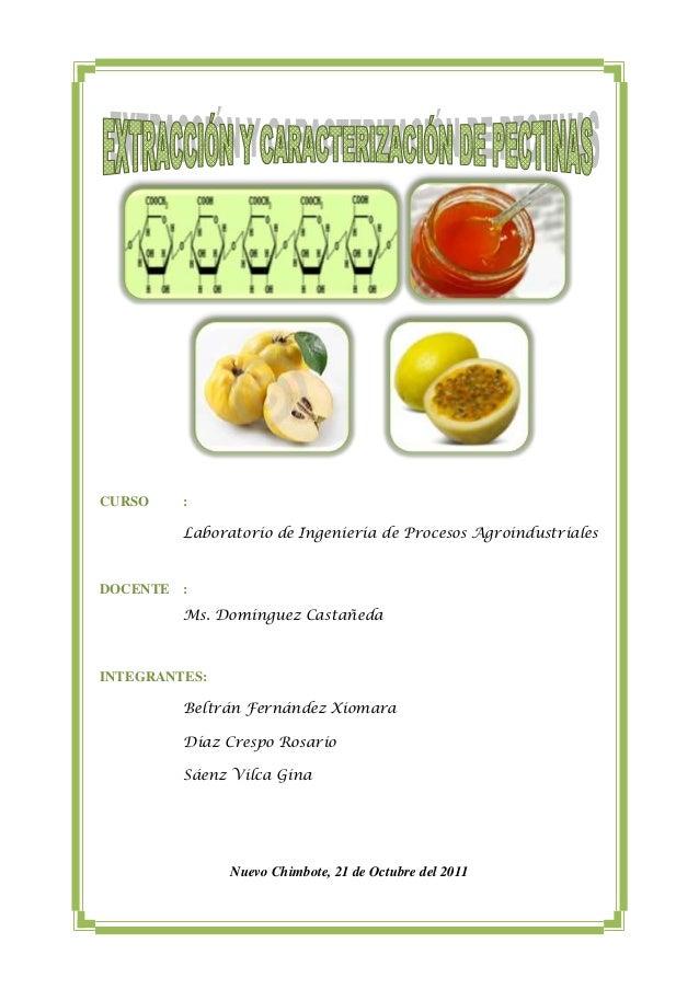 CURSO    :         Laboratorio de Ingeniería de Procesos AgroindustrialesDOCENTE :         Ms. Domínguez CastañedaINTEGRAN...