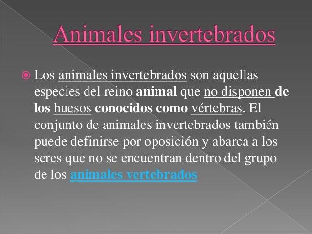 › Animales vertebrados.http://conociendolosanimales.infoportales.com/categoria.asp?idcat=33› Animales invertebrados.http:/...