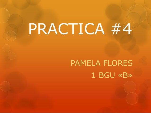 PRACTICA #4 PAMELA FLORES 1 BGU «B»
