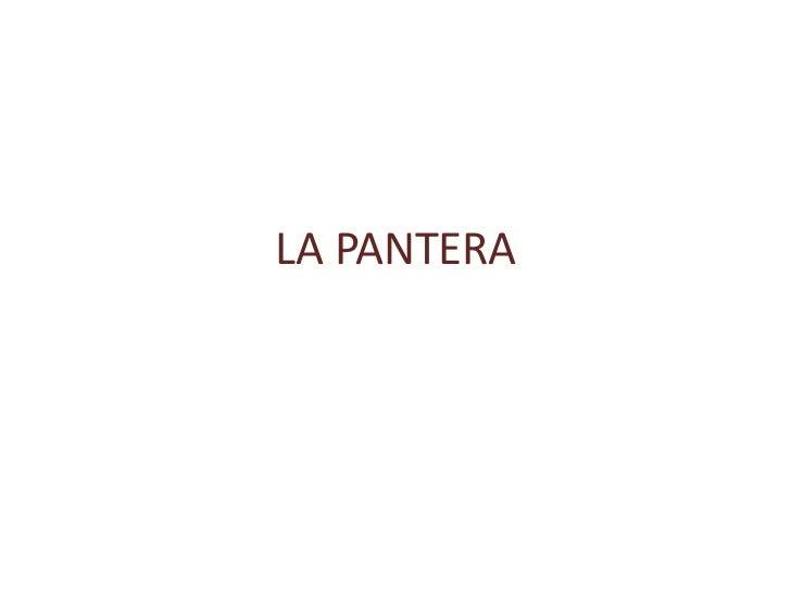 LA PANTERA<br />