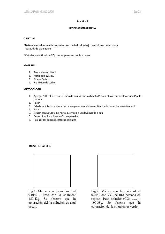 LUCÍA ESMERALDA ARAUJO GARCIA Gpo: 251 Practica 5 RESPIRACIÓN AEROBIA OBJETIVO *Determinar la frecuencia respiratoria en u...