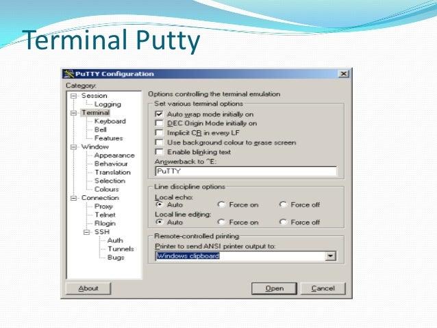 Terminal Putty