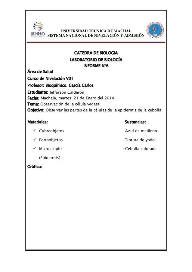 UNIVERSIDAD TECNICA DE MACHAL SISTEMA NACIONAL DE NIVELACIÓN Y ADMISIÓN  CATEDRA DE BIOLOGIA LABORATORIO DE BIOLOGÍA INFOR...