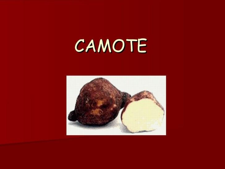 CAMOTE