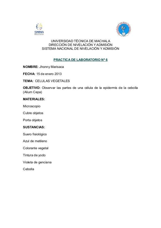 UNIVERSIDAD TÉCNICA DE MACHALA DIRECCIÓN DE NIVELACIÓN Y ADMISIÓN SISTEMA NACIONAL DE NIVELACIÓN Y ADMISIÓN PRACTICA DE LA...