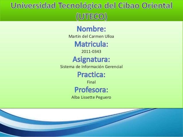 Martin del Carmen Ulloa 2011-0343 Sistema de Información Gerencial Final Alba Lissette Peguero