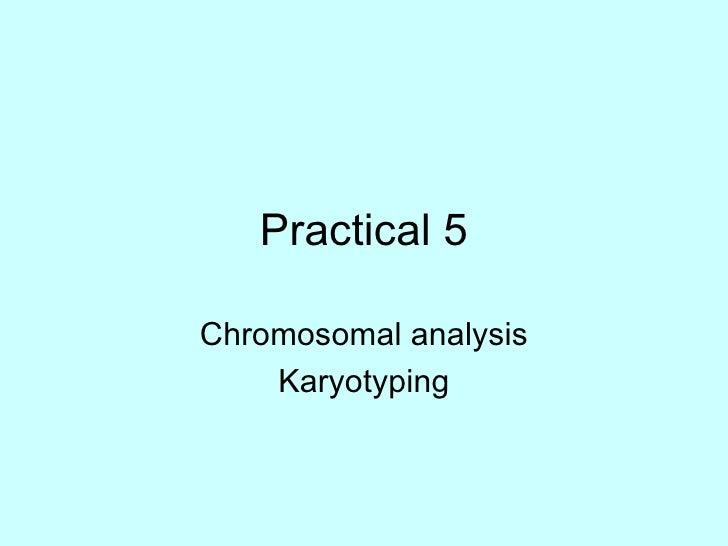 Practical 5 Chromosomal analysis Karyotyping