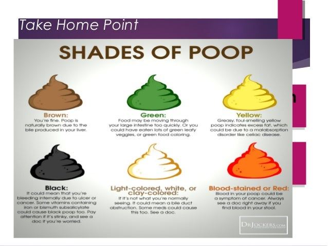 Causes Of Green Stool In Adults What Does Green Poop Mean