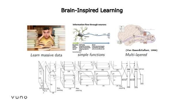 Brain-Inspired Learning