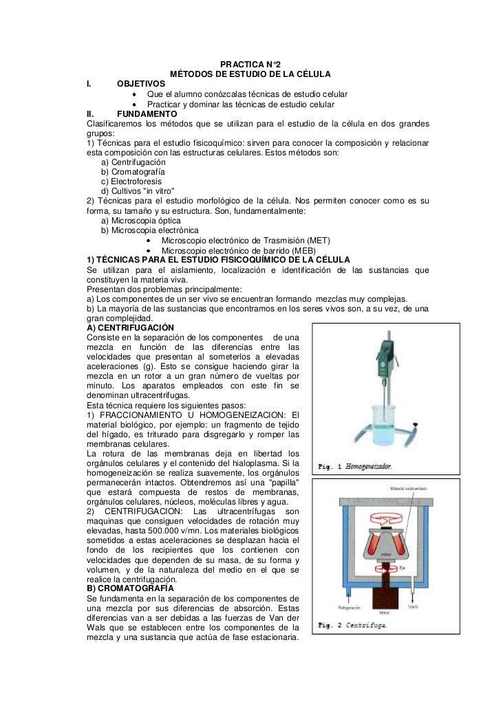 PRACTICA N°2                     MÉTODOS DE ESTUDIO DE LA CÉLULAI.       OBJETIVOS                  Que el alumno conózcal...