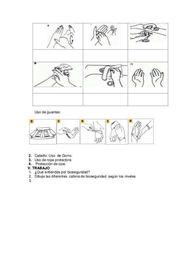 Practica n 2
