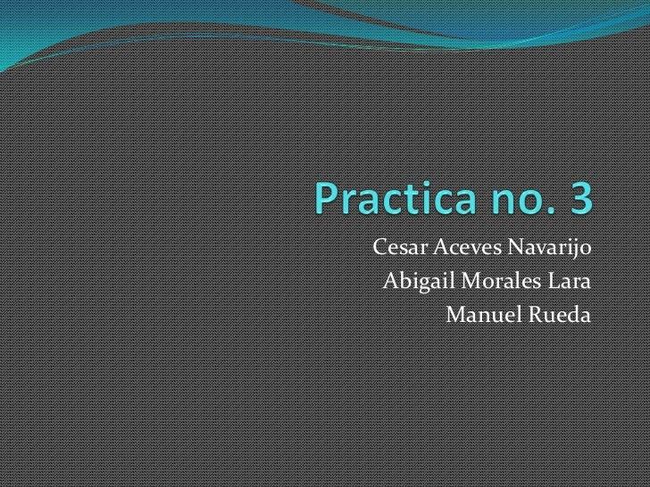 Cesar Aceves Navarijo Abigail Morales Lara       Manuel Rueda