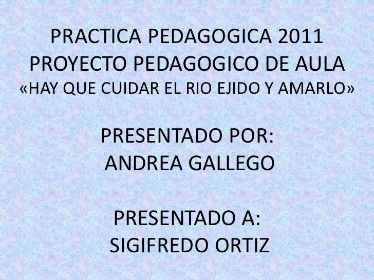 PRACTICA PEDAGOGICA 2011 PROYECTO PEDAGOGICO DE AULA«HAY QUE CUIDAR EL RIO EJIDO Y AMARLO»         PRESENTADO POR:        ...