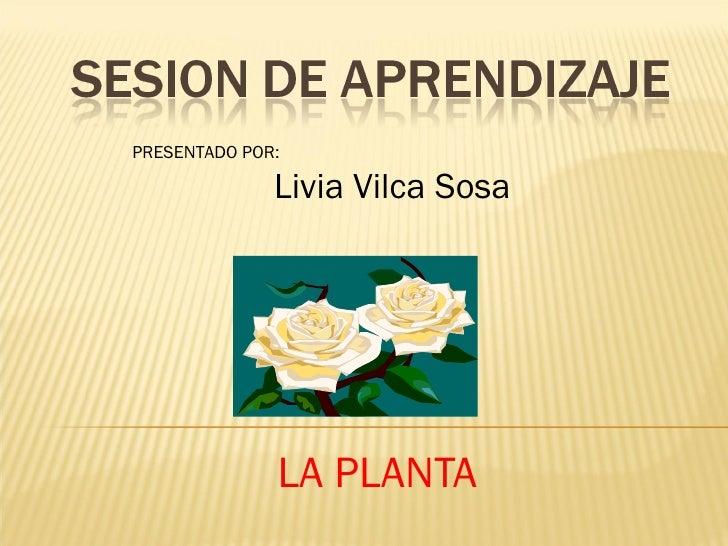 LA PLANTA PRESENTADO POR: Livia Vilca Sosa