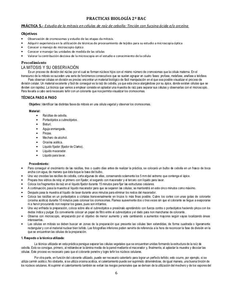 Practicas de 2 bachilelrato for L practicas