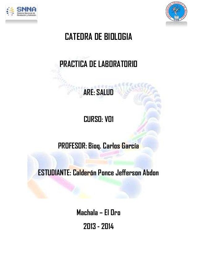 CATEDRA DE BIOLOGIA PRACTICA DE LABORATORIO ARE: SALUD CURSO: VO1 PROFESOR: Bioq. Carlos García ESTUDIANTE: Calderón Ponce...