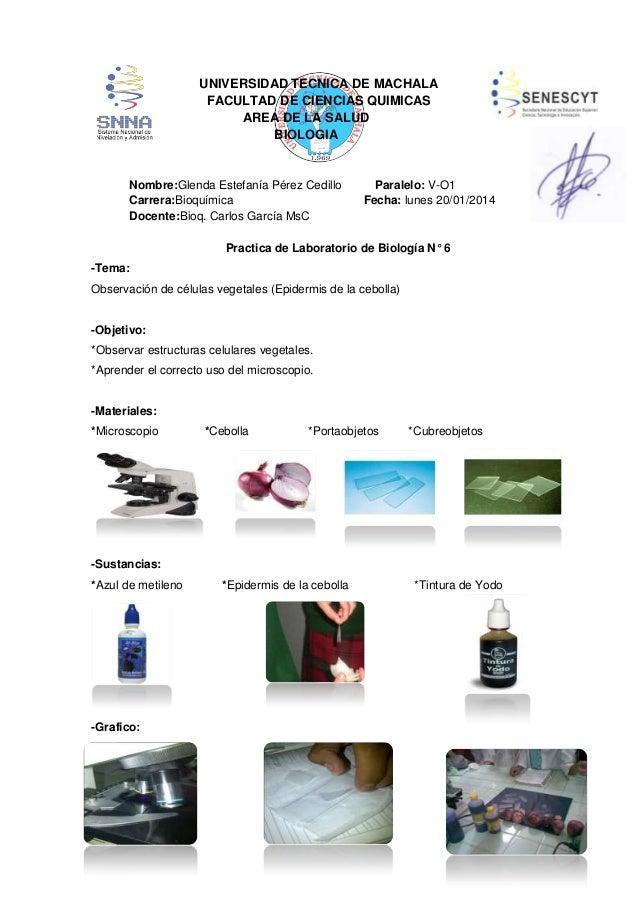UNIVERSIDAD TECNICA DE MACHALA FACULTAD DE CIENCIAS QUIMICAS AREA DE LA SALUD BIOLOGIA  Nombre:Glenda Estefanía Pérez Cedi...