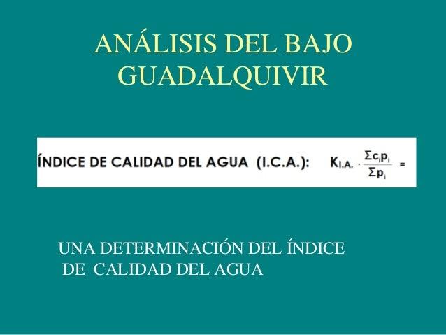 ANÁLISIS DEL BAJO GUADALQUIVIR UNA DETERMINACIÓN DEL ÍNDICE DE CALIDAD DEL AGUA
