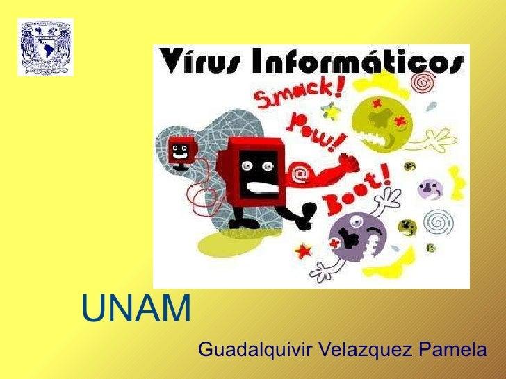 UNAM Guadalquivir Velazquez Pamela