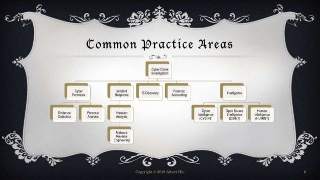 Common Practice Areas Cyber Crime Investigation Cyber Forensics Evidence Collection Forensic Analysis Incident Response In...