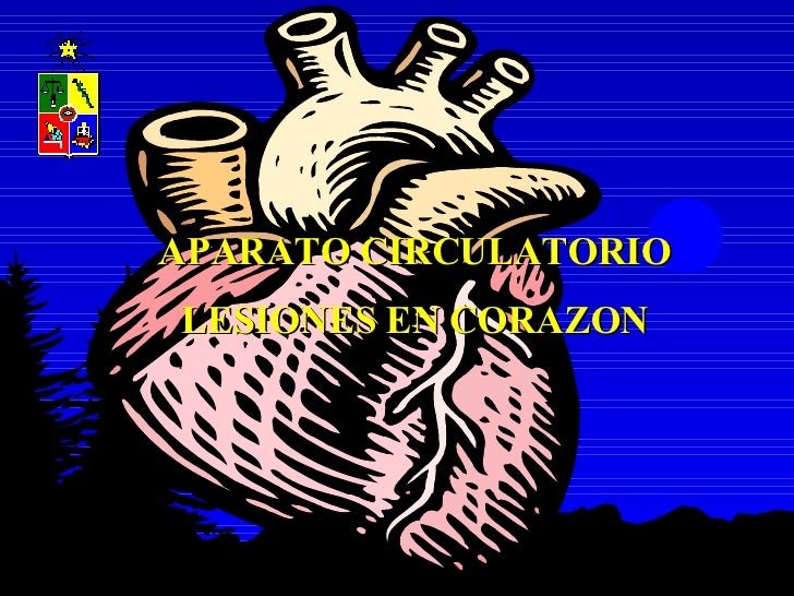 APARATO CIRCULATORIO LESIONES EN CORAZON