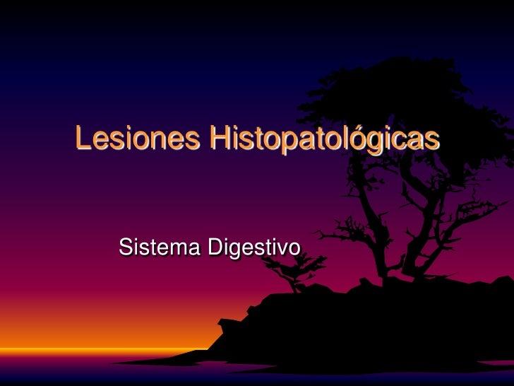 Lesiones Histopatológicas<br />Sistema Digestivo<br />