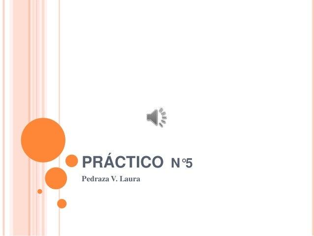 PRÁCTICO N°5 Pedraza V. Laura
