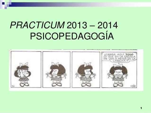 1 PRACTICUM 2013 – 2014 PSICOPEDAGOGÍA