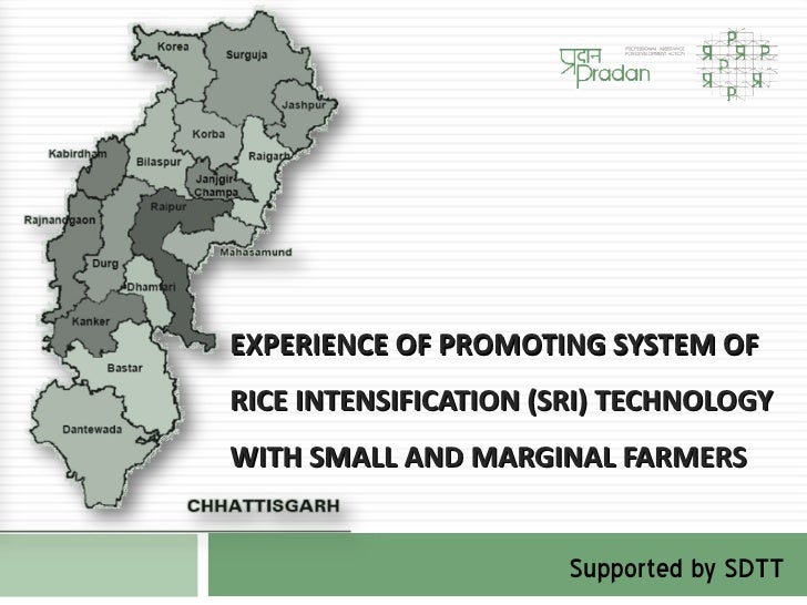 EXPERIENCE OF PROMOTING SYSTEM OFRICE INTENSIFICATION (SRI) TECHNOLOGYWITH SMALL AND MARGINAL FARMERS                     ...
