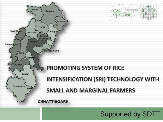 PROMOTING SYSTEM OF RICEINTENSIFICATION (SRI) TECHNOLOGY WITHSMALL AND MARGINAL FARMERSSupported by SDTT