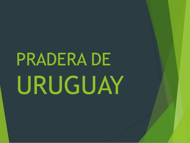 PRADERA DE URUGUAY