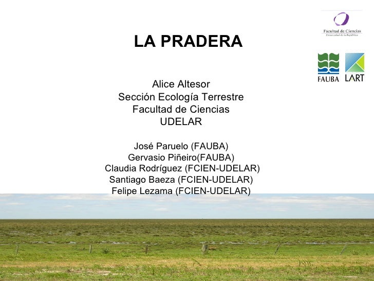 Alice Altesor Sección Ecología Terrestre Facultad de Ciencias UDELAR José Paruelo (FAUBA) Gervasio Piñeiro(FAUBA) Claudia ...